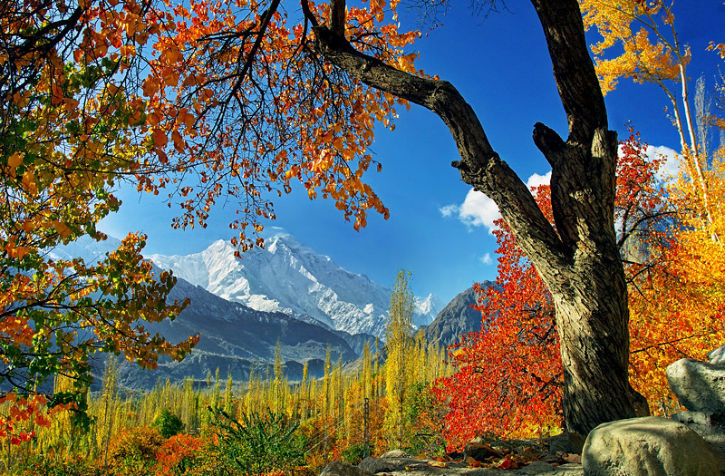 Hunza Autumn Tours