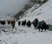 Trek to Nanga Parbat Fairy Meadows & Batura