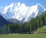 Trek to Nanaga Parbat & Fairy Meadow