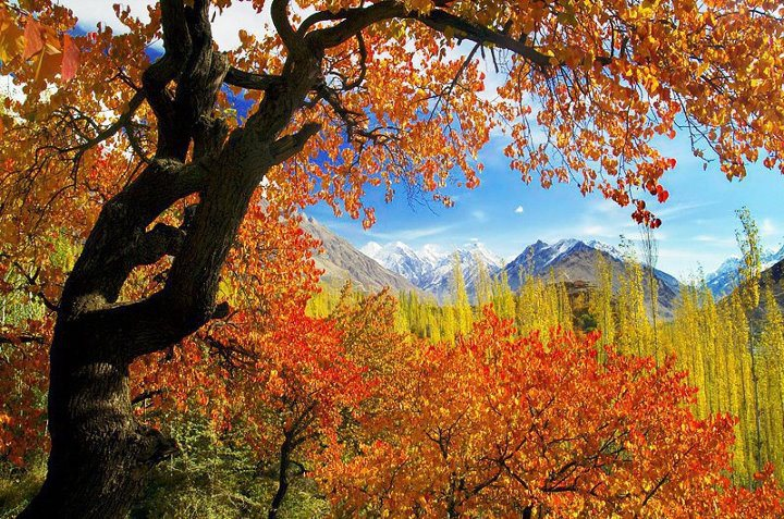 Seasonal Tours in Pakistan