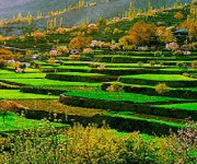 Trek to Panoramic Hunza